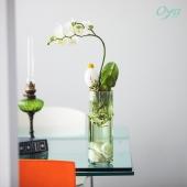 Les fleuristes Oya fleurs vous proposent la fameuse Orchidée papillon dans une version originale : dans l'eau ! Or'chidée attirera sans nul doute vos invités les plus curieux. Observez ensemble les racines se développer et les fleurs fleurir. . . . #orchidee #phalaenopsis #paques #plantedansleau #plante #collectionflorale #hydroponie #plant #plantlover #oya #oyafleurs