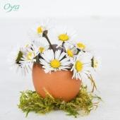 Pour les fêtes de Pâques, nous vous avons préparé une nouvelle collection florale. Comme à chaque fois, on vous fait deviner le thème à l'aide d'un indice photo. Avez-vous trouvé le thème ? . . . #oya #oyafleurs #flowerstagram #collectionflorale #flowers #fleuriste