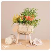 Pimentez la fin de l'été avec cette pelote végétale ! Piments, physalis et calluna s'entremêlent dans un petit pot sur pieds enroulé de fil. . . . #piment #physalis #calluna#plante #plantes #plant #plantlover #plantaddict #plantsofinstagram #oya #oyafleurs