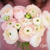 Dans le langage des fleurs,  la renoncule est la fleur de la séduction et vante la beauté de son destinataire. Offrez-la comme un compliment ou offrez-vous un auto-compliment fleuri ! . Profitez-en le bouquet de renoncules est à 9,90€ jusqu'au 28 mars 2021* . . #oya #oyafleurs #offre #compliment #ranunculus #renoncules #printemps #flowerpower *Offre valable dans les boutiques participantes à l'opération. Voir conditions en magasins.