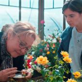 [🎬 CONCOURS 🌹]  Oya Fleurs s'associe à VAL'HOR, l'interprofession des professionnels du végétal, pour la sortie du film « La Fine Fleur », réalisé par Pierre Pinaud.  À travers le personnage d'Eve Vernet, productrice de roses interprétée par Catherine Frot, ce film met en lumière, les professionnels qui œuvrent chaque jour dans le monde du végétal ! Pour la sortie en salle du film, nous sommes heureux de vous faire gagner 2 invitations pour 2 personnes pour savourer cette histoire fleurie dans le cinéma de votre choix.  Pour participer c'est très simple, il vous suffit : 💚 d'aimer la publication 🎬 de commenter la publication. Dites-nous par exemple avec qui vous aimeriez découvrir cette belle histoire. 🍀 Vous avez jusqu'au dimanche 04 juillet à minuit pour participer.  Bonne chance à tous !