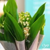 Les petites clochettes porte-bonheur sont arrivées en magasin ! En brin, en pot ou en bouquet, elles vous apporteront un peu de bonheur et de chance en ce 1er Mai 🍀 C'est tout ce qu'on vous souhaite ! . . . #portebonheur #muguet #lilyofthevalley #premiermai#flowers #flowerstagram #flowershop #instafleurs #floweroftheday #oya #oyafleurs