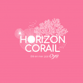 BRAVO ! Certains d'entre vous ont trouvé le thème de la collection de juillet ! Notre aventure florale de l'été est intitulée : Horizon Corail. Alors prêts à plonger avec nous dans de nouvelles aventures fleuries ? . . .